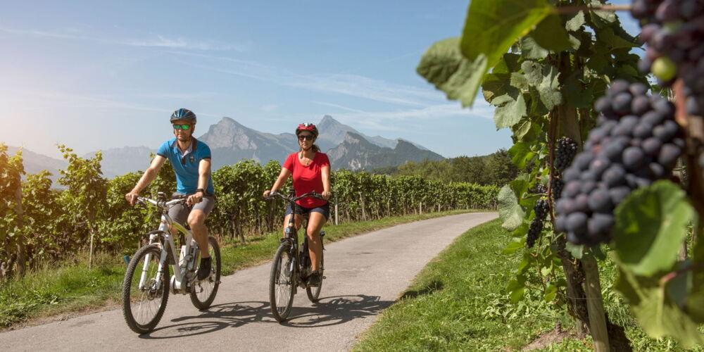 E-Bike_Rhein_route.jpg