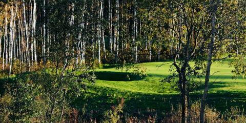 Golf_Litauen4.jpg