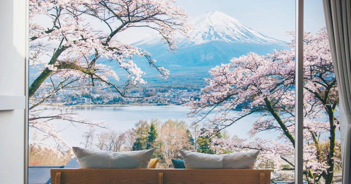 Welche Weiteren Japan Spezialisten Verbergen Sich Hinter Den Fachern Japan Travelnews Ch