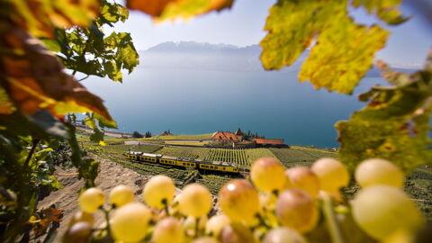 Herbst_Swiss_Image_SWS17786.jpg