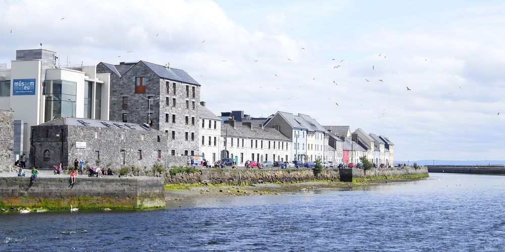 Galway_Ruby-doan.jpg