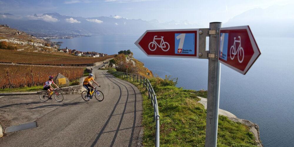 Rhone-Route.jpg