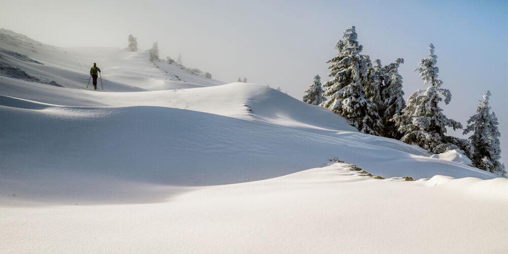 Waadt_Skiwandern.jpg