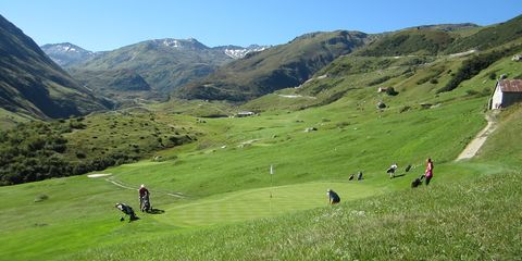 golf_realp.jpg