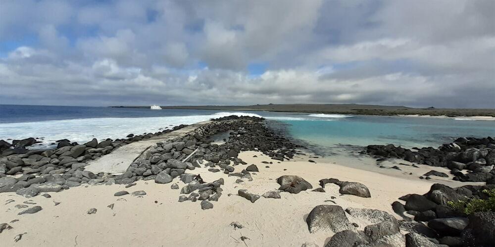 Galapagos_Auftakt.jpg