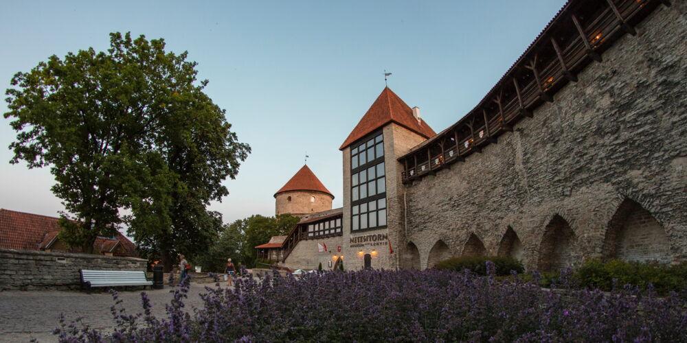 Tallinn_julius-jansson.jpg