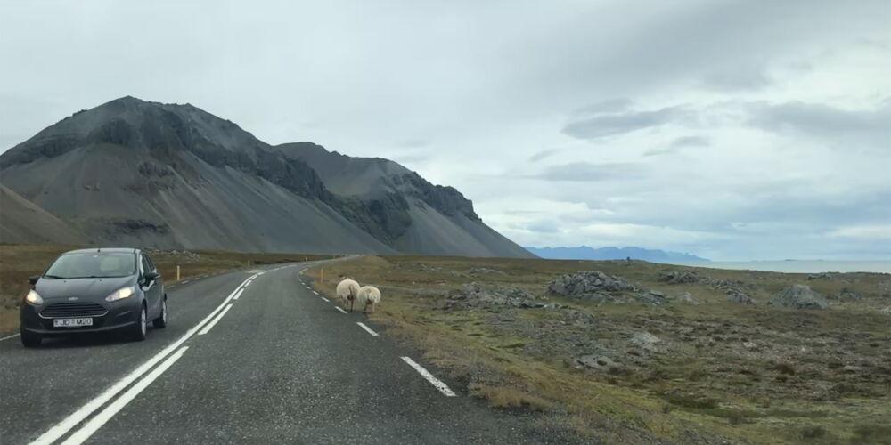 Iceland_Roadtrippin.jpg