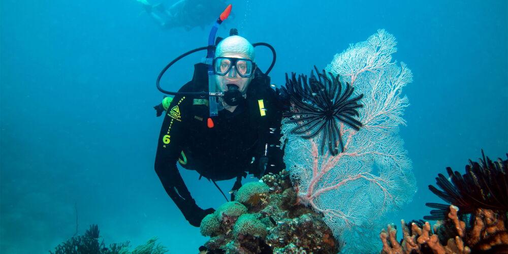 Barrier_Reef_Wälterlin.jpg