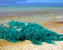 Conservation_Travel_Fishing_Net.jpg