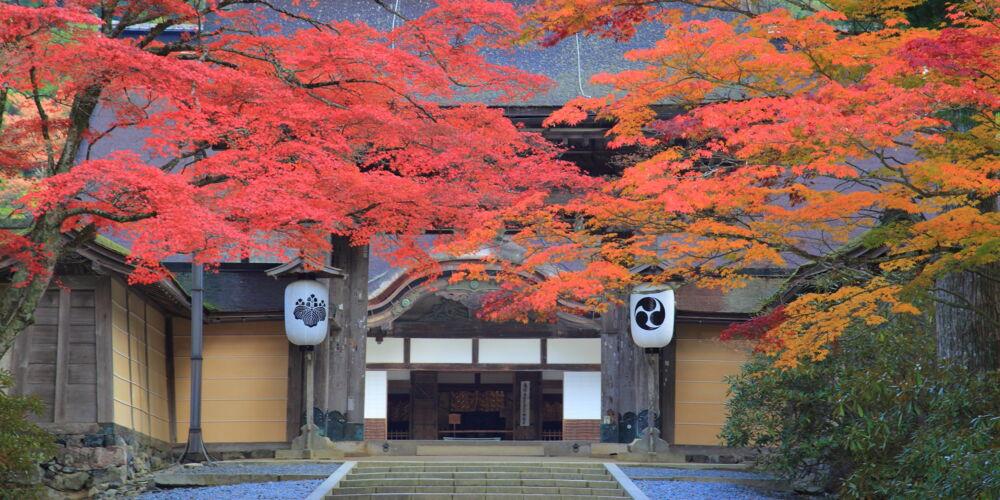 Kongobu-ji Head Temple ©Visit Wakayama.jpg