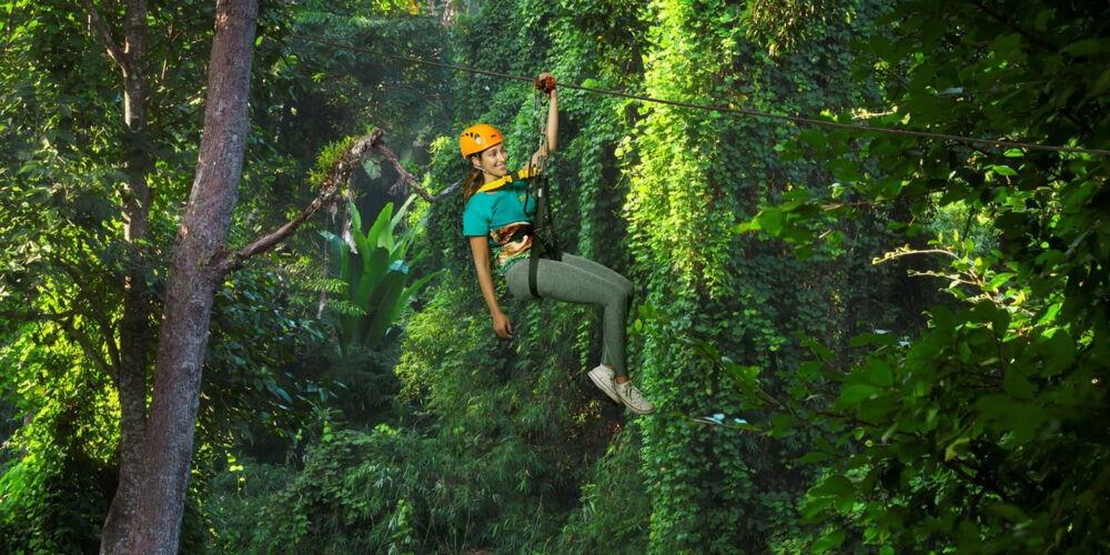 Hero 3 - Flight of the Gibbon.jpg