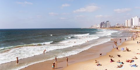 Tel Aviv_Daniel Klein.jpg